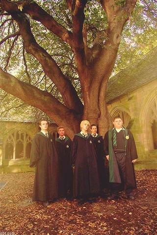 Draco♥