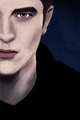 Edward Cullen - twilighters fan art