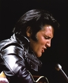 Elvis...Come Back Special - elvis-presley photo