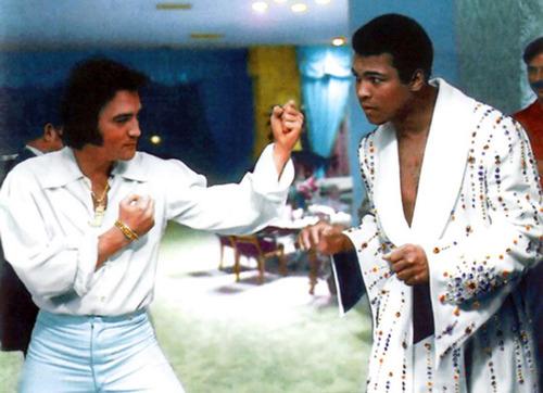 elvis presley fondo de pantalla called Elvis meets Muhammed Ali