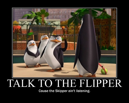 Flipper Skipper
