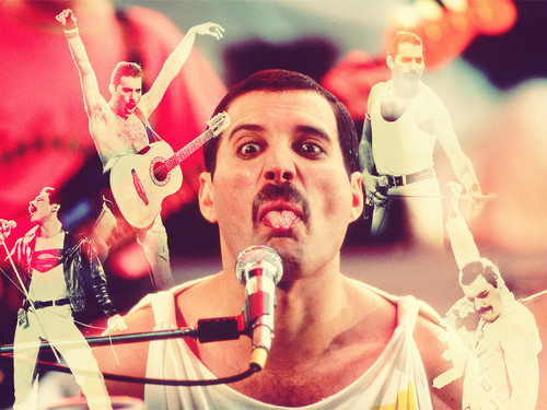 Freddie Mercury wallpaper probably with a concert and a drummer titled Freddie