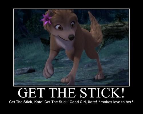 Get the stick!!!