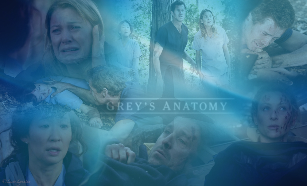 grey 39 s anatomy 8x24 wallpaper grey 39 s anatomy fan art
