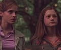 Hermione &amp; Ginny - ginevra-ginny-weasley photo