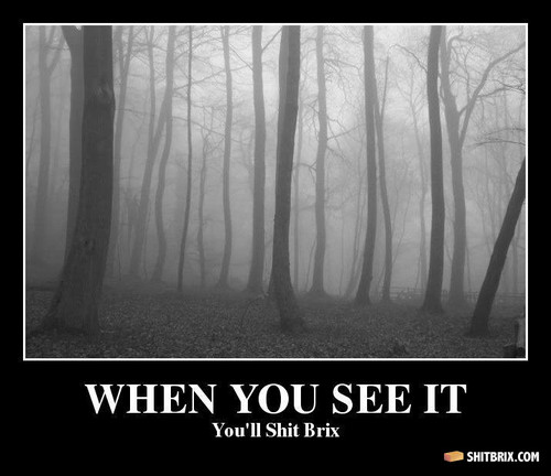 Hiding in the Woods - the-slender-man Photo