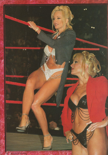 Former WWE Diva... Debra achtergrond probably containing bare legs, hosiery, and a zwempak, badpak entitled High Quality Debra Scans