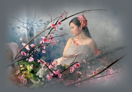 Japanese चेरी Blossom For My Dear Friend Aiko xx