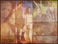 Kate &amp; Sawyer - lost wallpaper
