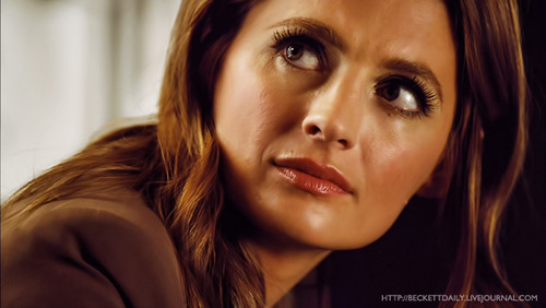 Kate Beckett wallpaper containing a portrait titled Kate