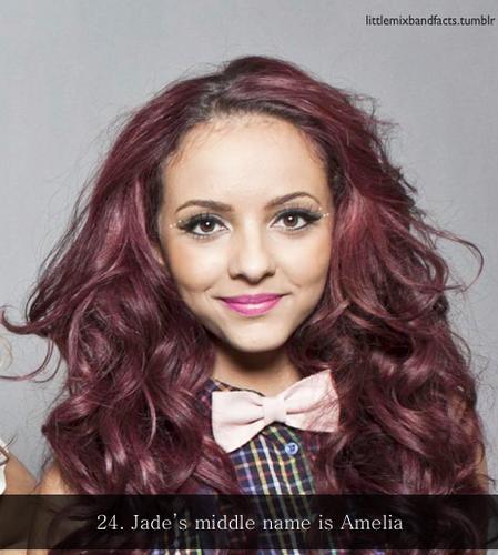 Little Mix Facts♥