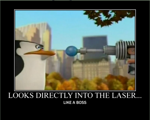 A look at the background of madagascar