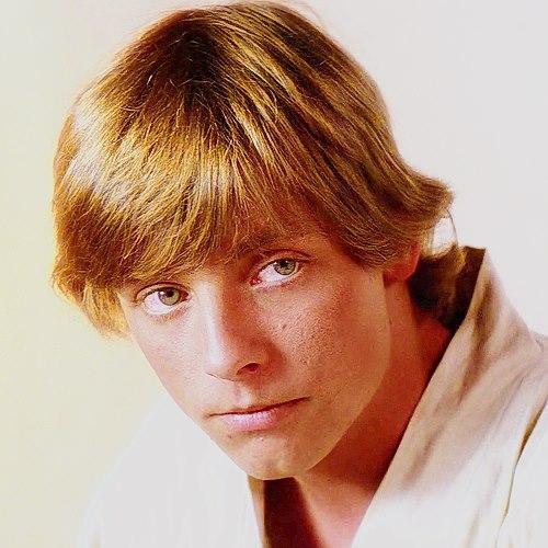 Luke Skywalker Actor Car Accident