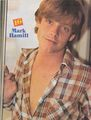 Mark in The Partridge Family - mark-hamill photo