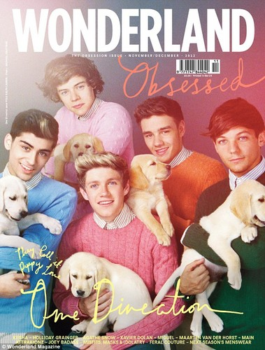 One Direction - Wonderland Cover
