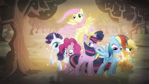 pony pony pony