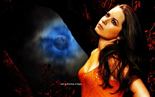 Piper Halliwell wallpaper titled Piper Wallpaper - Halloween Special