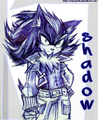 Shadow Looking Cool - shadow-the-hedgehog photo