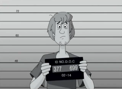 Scooby-Doo wallpaper called Shaggy's Mugshot