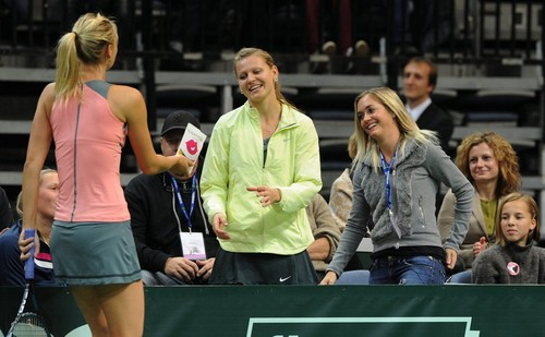 Мария Шарапова Обои titled Sharapova,Safarova and Zakopalova