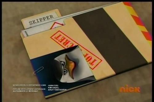 Skipper's Denmark File