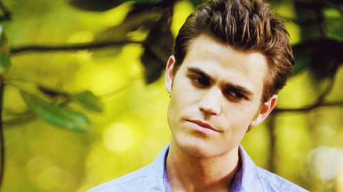 Stefan Salvatore wallpaper probably with a portrait entitled Stefan