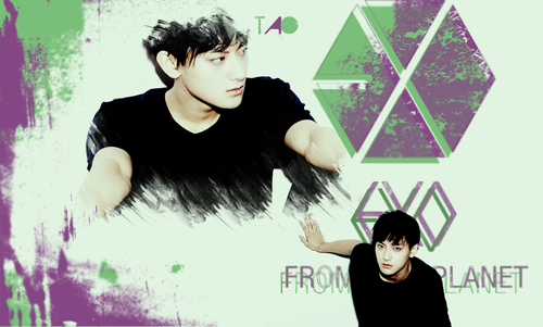 Tao 壁紙 possibly with a portrait entitled Tao Wallpaper!!<33