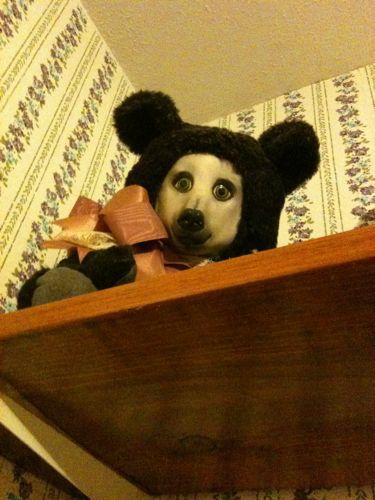 Teddy 都市传说