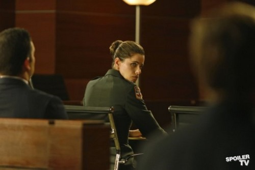 The Good Wife - Episode 4.06 - The Art of War - Promotional litrato