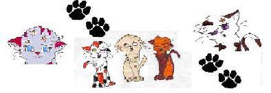 UCreate kucing Banner