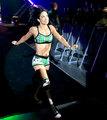 WWE Worldwide - France 2012