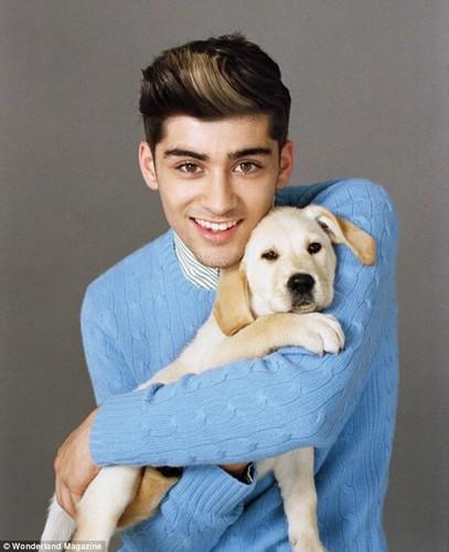 Zayn Malik with a pup