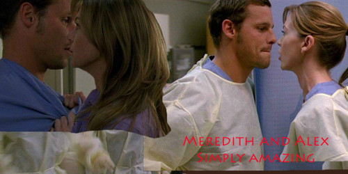 alex nd meredith