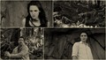 bd2 hun - twilight-series wallpaper