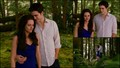 bd2 newborn - twilight-series wallpaper