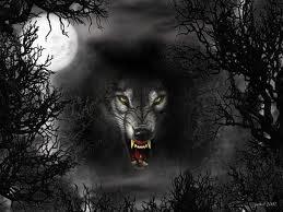 black 狼
