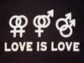 love is love - gay-rights photo