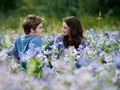 movies peeks - twilight-series photo
