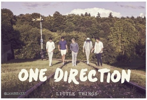 one direction,Little Things, 2012
