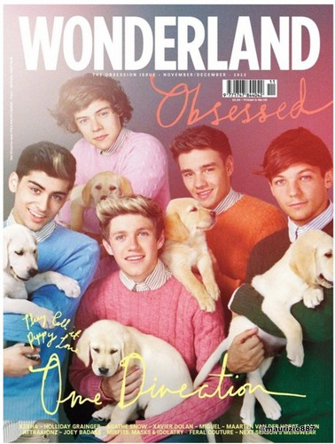 one direction,Wonderland Magazine.