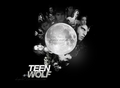 tw - teen-wolf photo