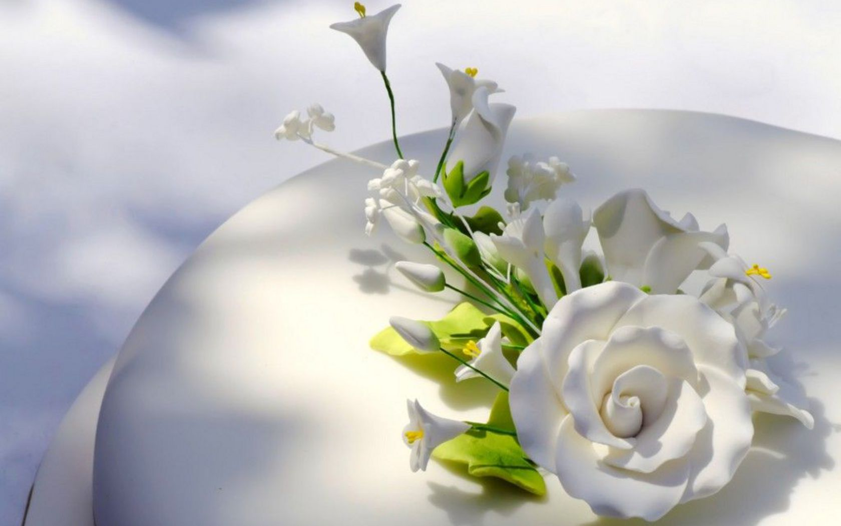 White Roses Wallpaper Hd Tumblr For Walls Mobile Phone Widescreen Desktop Full Size Download 2013