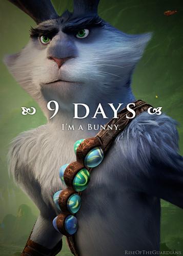★ 9 days ☆