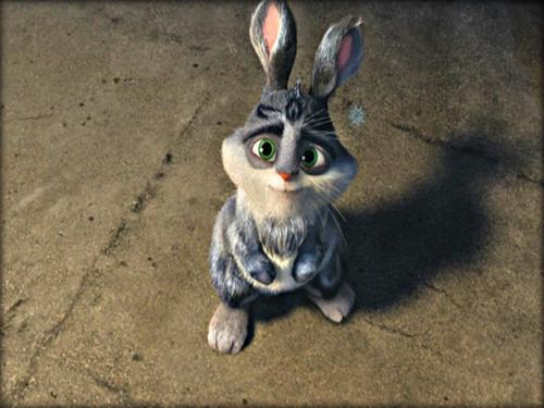 ★ Bunnymund ☆