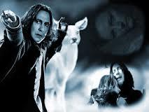 A Bit Of Snape