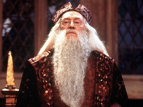 Albus Dumbledore 壁紙