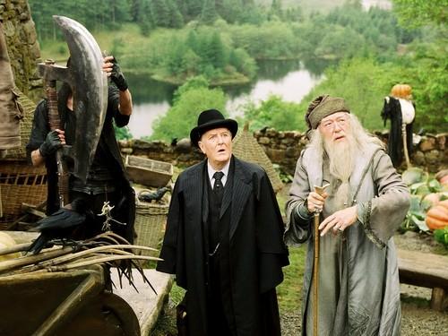 Albus Dumbledore karatasi la kupamba ukuta