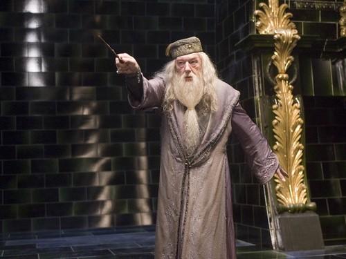 Hogwarts Professors wallpaper possibly with a fur coat and a mink called Albus Dumbledore Wallpaper