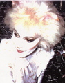 Amanda Courtney-Davies as Victoria - 1986 London Cast  - cats-the-musical photo