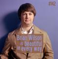 Beach Boys Confessions #142